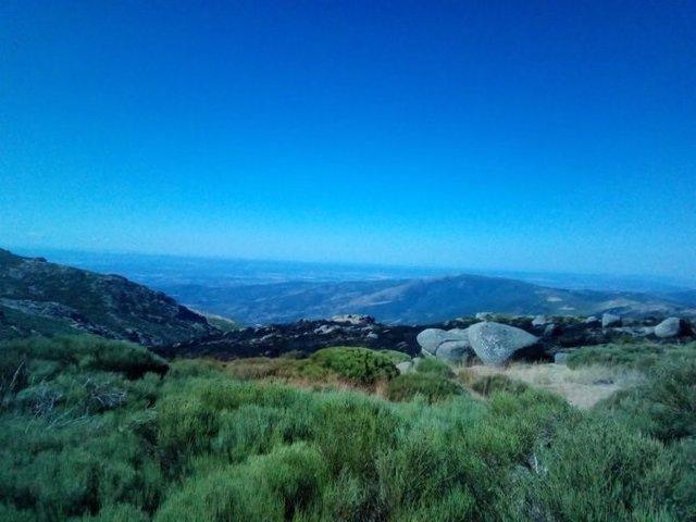 Situación del incendio en la Sierra de Tormantos