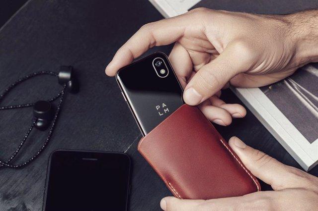 Smartphone Palm