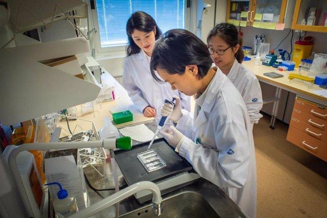 Crean gemelos digitales para probar y adaptar la medicación a pacientes de forma individualizada.