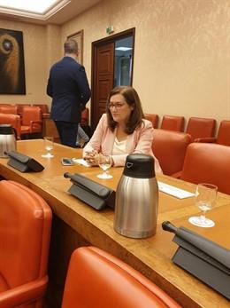 La diputada de CC en el Congreso de los Diputados, Guadalupe González Taño