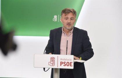 PSOE-A respeta lo sucedido en Navarra pero hubiera preferido otra abstención a la de Bildu