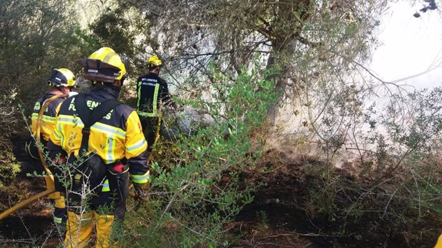 Imagen del incendio forestal controlado por los efectivos de emergencias.