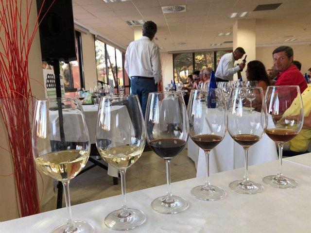 Catas con vino del Condado de Huelva.