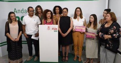 """El PSOE de Huelva llevará a ayuntamientos y Diputación una moción en defensa del IAM ante """"la amenaza del trifachito"""""""