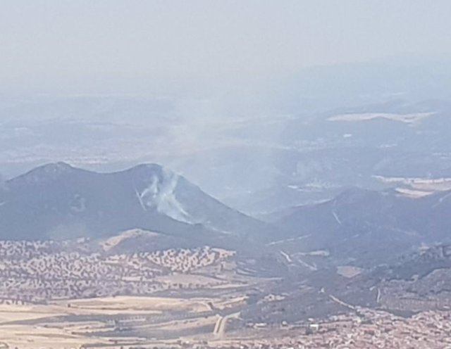 Incendio forestal en Zarza Capilla