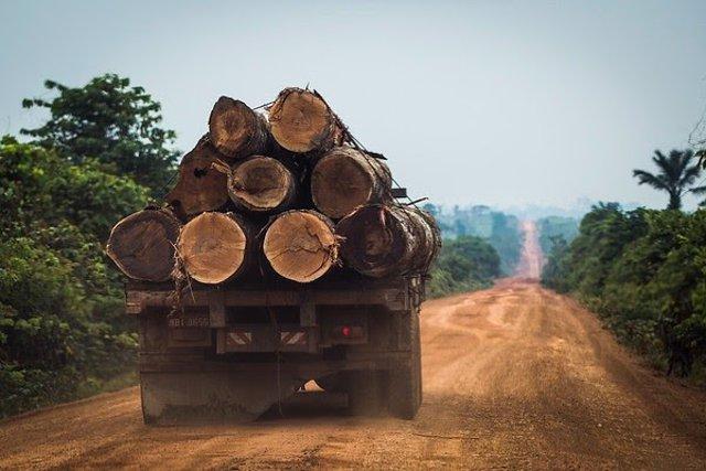 La deforestación en Brasil crece un 40% y las políticas de Bolsonaro están destr