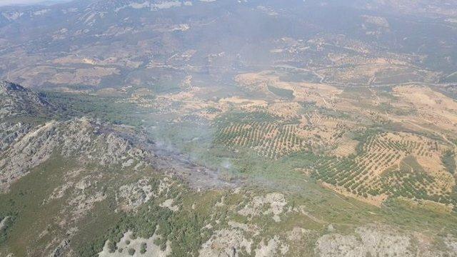 Incendio en Navex¡zuelas, una vez estabilizado.