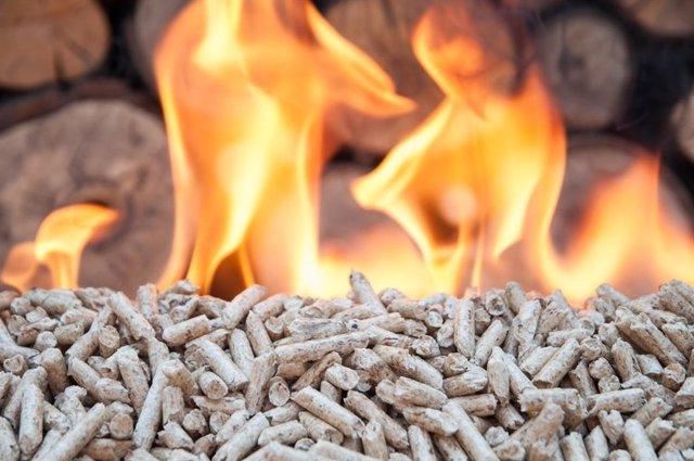 Biomasa.