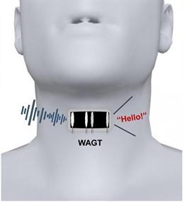 Una garganta de grafeno artificial portátil, abreviada aquí como 'WAGT', puede transformar los movimientos de la garganta humana en diferentes sonidos con el entrenamiento del usuario.