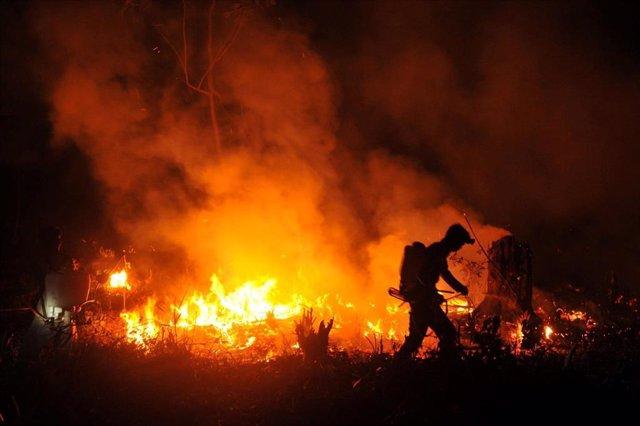 Bombero extinguiendo un incendio forestal en Indonesia