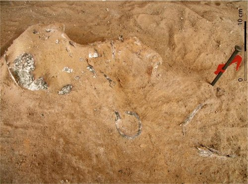 Restos humanos localizados en el enterramiento infantil de Gebel Ramlah