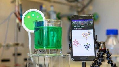 IBM desarrolla una 'lengua electrónica' que permite analizar líquidos rápidamente