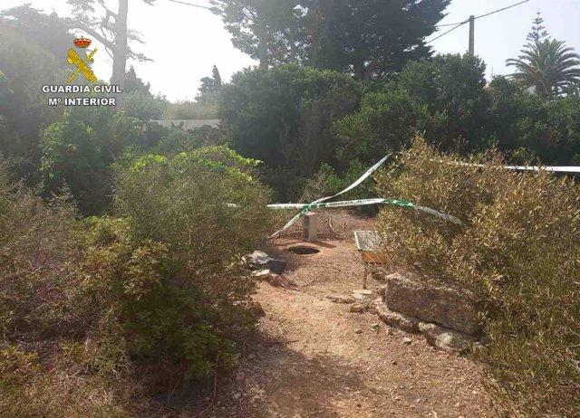 Acceso ocultdo donde se encontraba la plantación de marihuana en Sant Lluís
