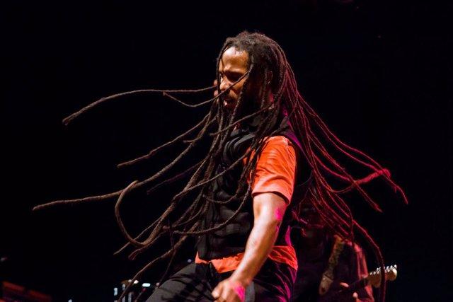 Ziggy Marley en una actuación