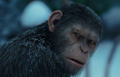 Disney planea nuevas películas de El Planeta de los Simios