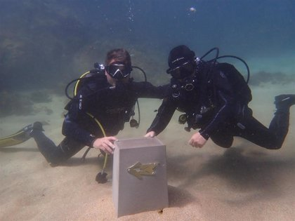 Monolitos subacuáticos en Cantabria indican el 'Camino de Santiagua'
