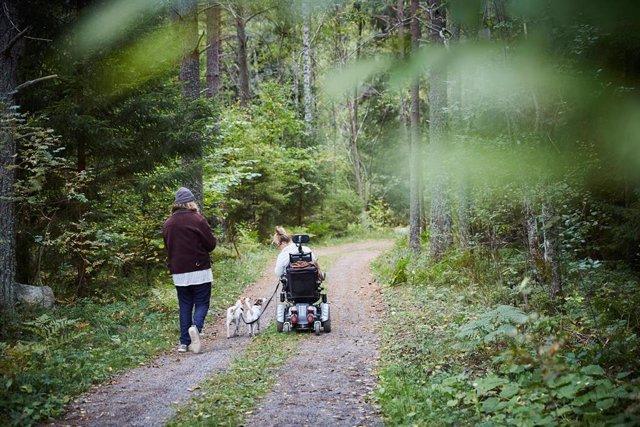 Vista trasera de un joven cuidador masculino con una mujer discapacitada y un perro en el bosque