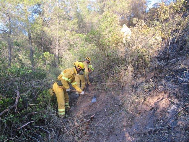 Tareas de extinción de un incendio forestal.
