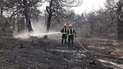El PP registra una iniciativa para paliar los daños de los incendios en el Parque Nacional de Guadarrama