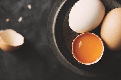 Un componente de los huevos o la carne, asociado con menor riesgo de demencia