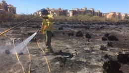 Efectivo del Infoca trabaja en un incendio en Isla Canela (Ayamonte, Huelva)