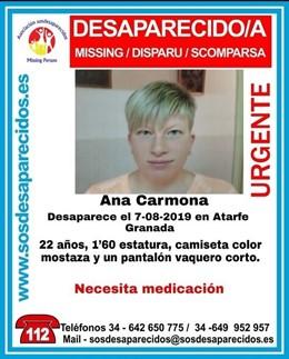 Cartel de la desaparición de Ana Carmona