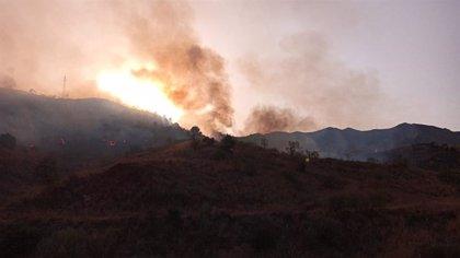 Controlado el incendio declarado en el paraje de La Virreina de Málaga este viernes
