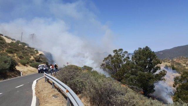 Incendio.- El Cabildo de Gran Canaria pide a la población que no suba a la cumbre
