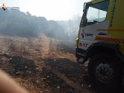 Extinguido un incendio en Vejer de la Frontera (Cádiz) tras calcinar 4,5 hectáreas de pasto y matorral