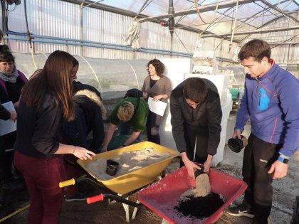 Un proyecto de la UPNA implica a seis centros educativos en el uso de compost para producir hortalizas