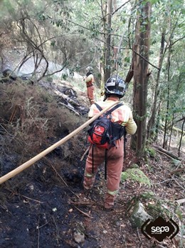 Incendio forestal en Valdés.