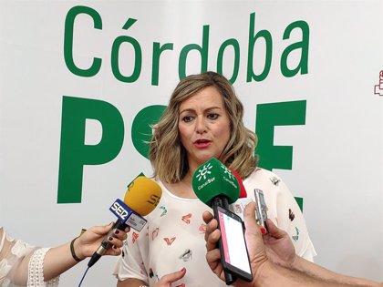 """PSOE-A pide a la Junta que """"deje de hacerse el sueco"""" y """"dé explicaciones"""" sobre el """"desgobierno"""" en Andalucía"""