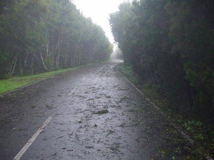 Canarias estará este lunes en aviso amarillo por vientos de hasta 80 km/h