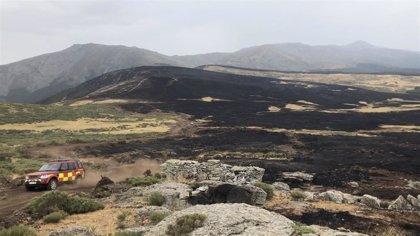 La Comunidad comienza la recuperación de las zonas quemadas tras los incendios de El Berrueco, Miraflores y Rascafría