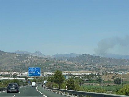 Controlado el incendio forestal en Torrox (Málaga)