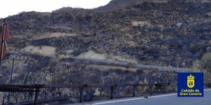 Los medios aéreos se reincorporan a los trabajos de extinción del fuego de Gran Canaria