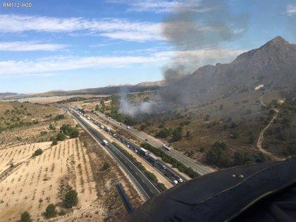 Efectivos del Infomur trabajan en un incendio en terreno forestal junto a la carretera N-301