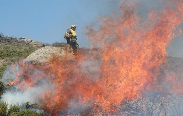 Imagen de un bombero que trata de apagar llamas en los incendios forestales de Miraflores y La Granja (Segovia).