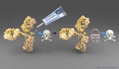 Desarrollan nuevos transportadores de fármacos para tratar las células tumorales