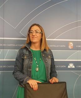 La vicesecretaria del PSCyL, Virginia Barcones, informa sobre cuestiones de actualidad.