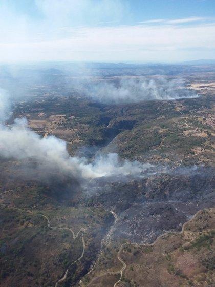 Quince medios aéreos trabajan en un fuego de nivel 1 en Saldeana (Salamanca)