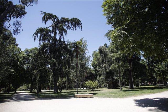 Passeig amb arbres i vegetació al Parc del Retir de Madrid.
