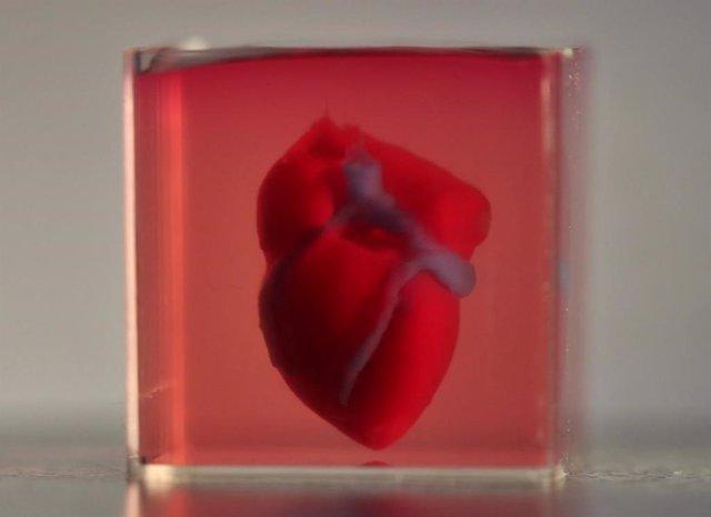 El primer corazón impreso 3D con tejido humano