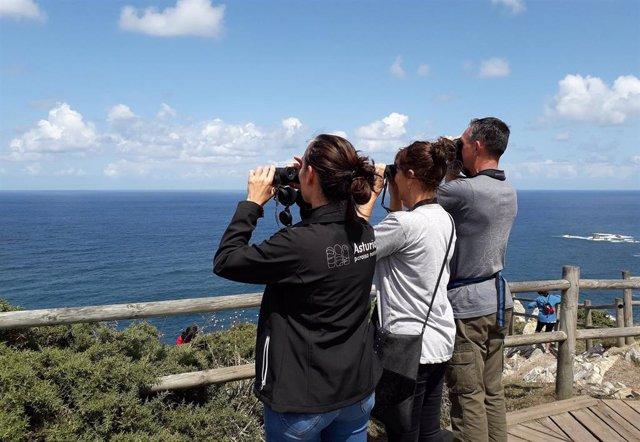 Visita al Cabo Peñas.