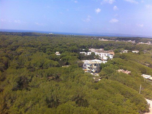 Formentera es el municipio más caro para comprar una vivienda, con un precio medio de 7.401 euros/m2
