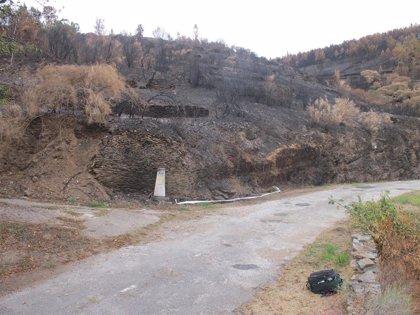 Detenidas dos personas por su relación con al menos siete incendios forestales ocurridos en Lugo