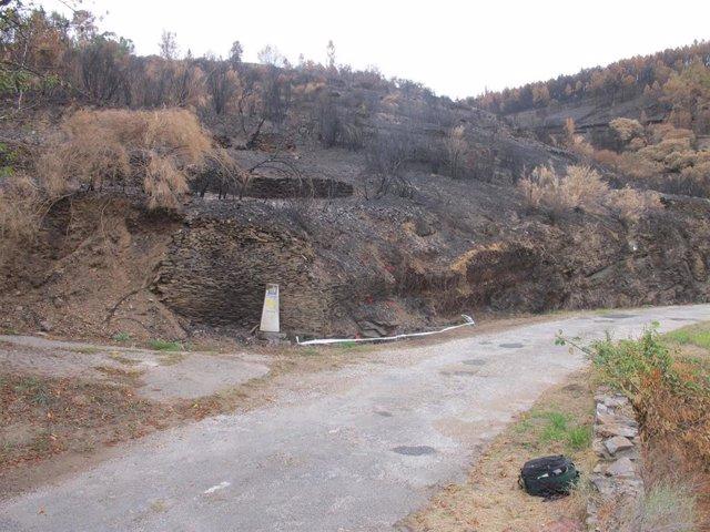 Detenidos dos hombres como presuntos autores materiales de varios incendios forestales el pasado mes en Lugo
