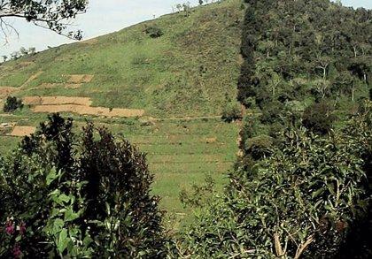 Suelos en África tropical emiten CO2 como 200 millones de automóviles