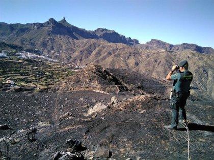 El Gobierno declara estabilizado el incendio forestal de Gran Canaria, que ha quemado cerca de 1.500 hectáreas
