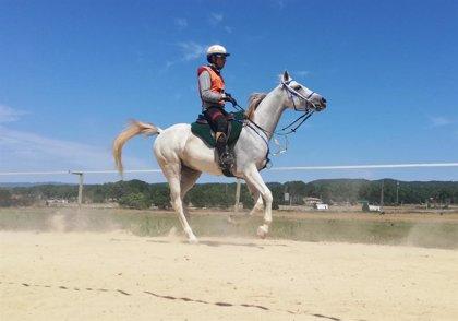 Crivillé se pasa a los caballos para competir en un Campeonato de Europa de hípica